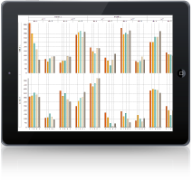 iPad-Custom-212x200
